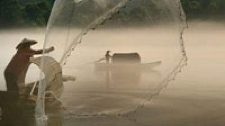 Rüyada Balık Avlayanları Görmek