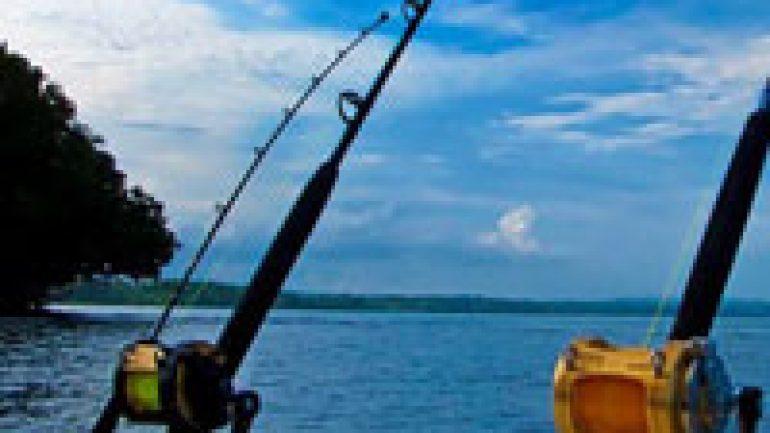 Rüyada Balık Tuttuğunu Görmek