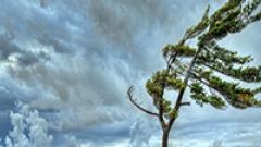 Rüyada Rüzgar Görmek Ne Anlama Gelir, Neye İşarettir?