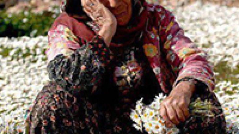 Rüyada Yaşlı Kadının Ağladığını Görmek Ne Anlama Gelir, Neye İşarettir?