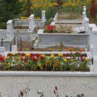 Rüyada Erkek Bebek Mezarı Görmek