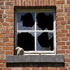 Rüyada Kırık Pencere Görmek