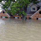 Sel Baskını
