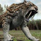 Rüyada Vahşi Hayvan Görmek